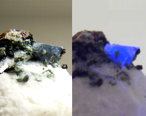 Benitoite Mineral UV light